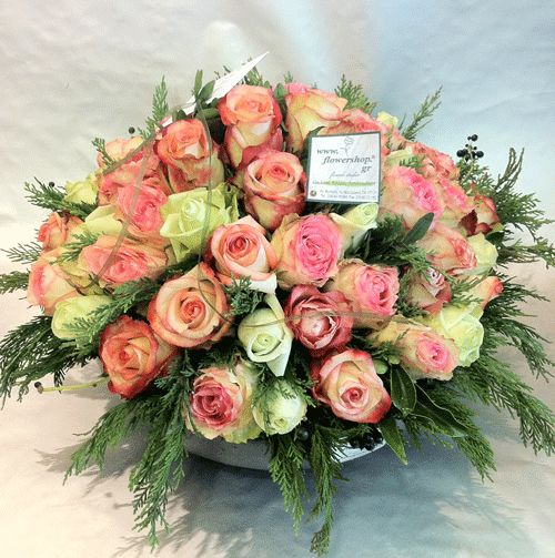 Roses arrangement in pot 50 stems