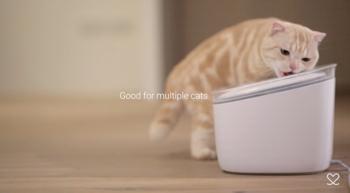 Pura A Smart Water Fountain For Cats Indiegogo