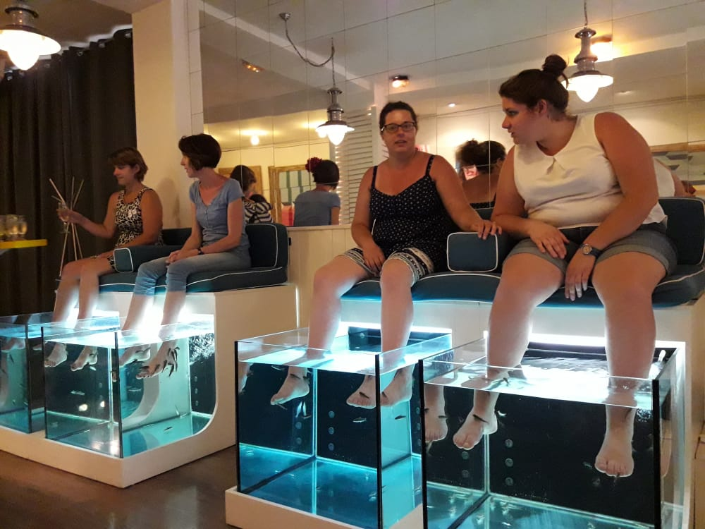 Gotic Barcelone Massage par des poissons