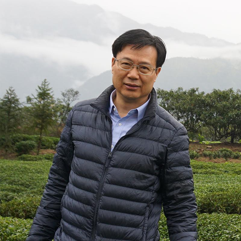 Xinmin profile small