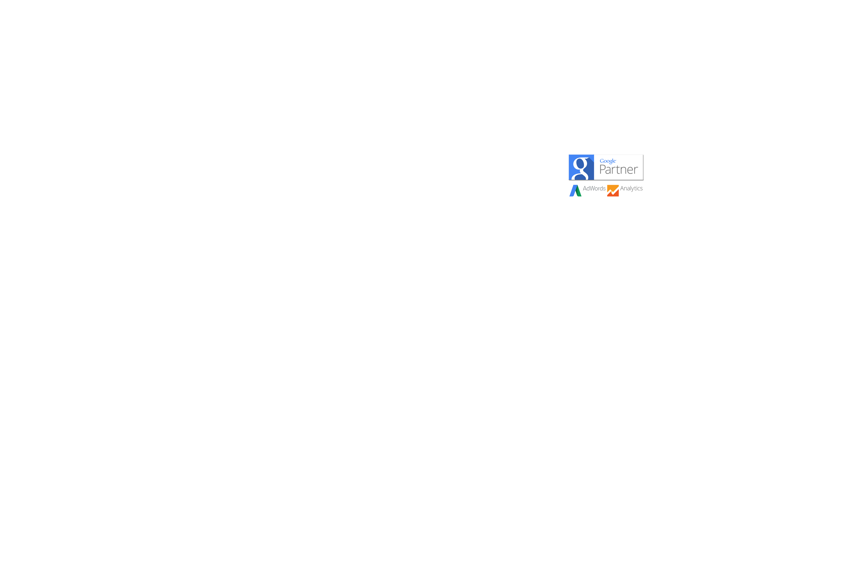 google partner seo sem analytics adwords elche alicante