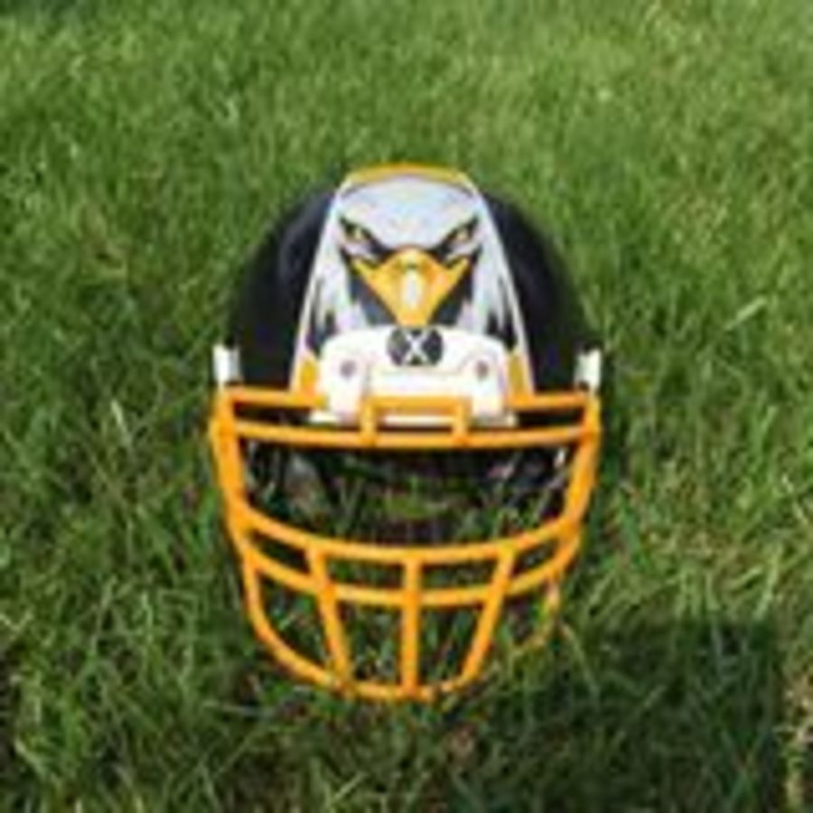 Football helmet 14565934822434