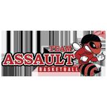 Team Assault Basketball