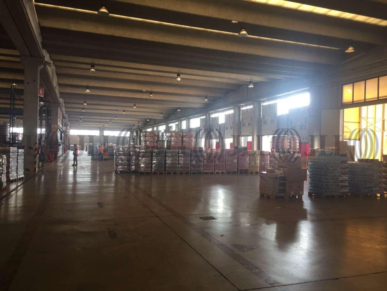 Magazzini industriali e logistici Milano, 20090 - Buccinasco