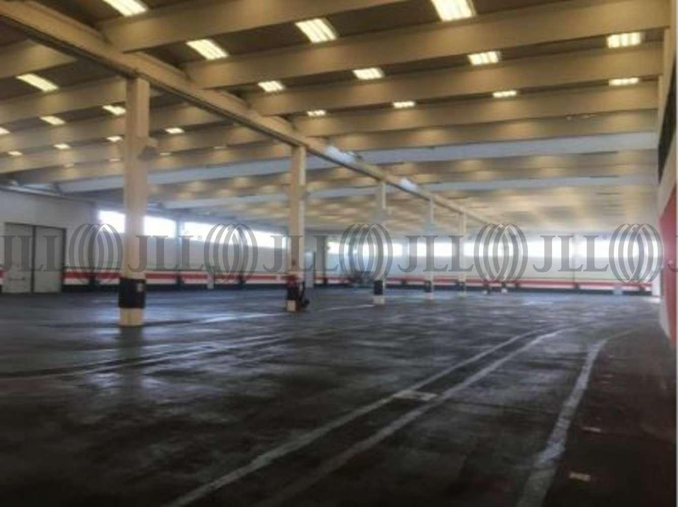 Magazzini industriali e logistici Monselice, 35043 - Monselice - Adriaone