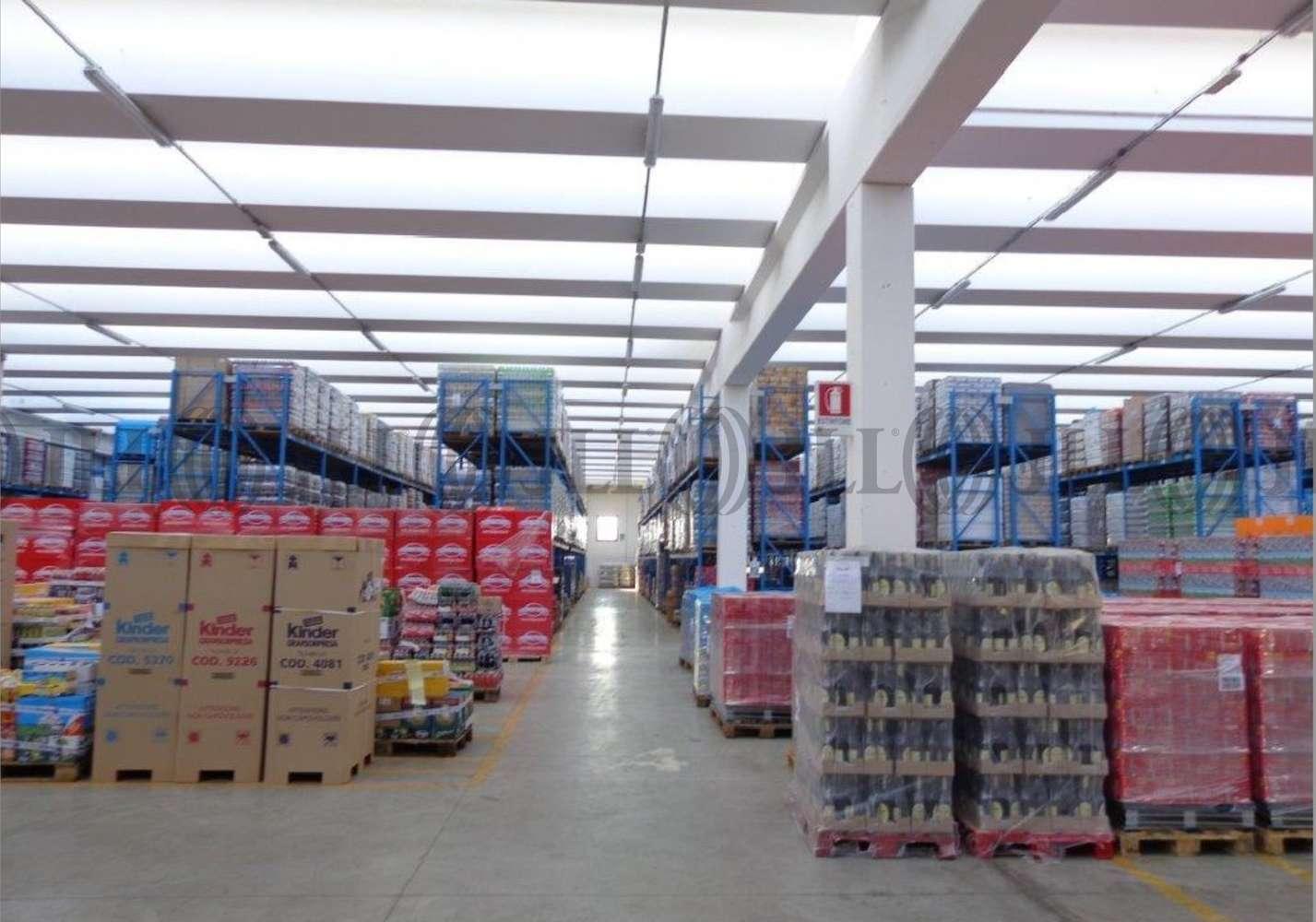 Magazzini industriali e logistici Mozzecane, 37060 - Mozzecane magazzini logistici