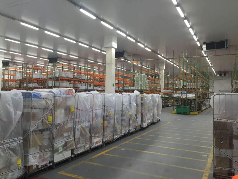 Magazzini industriali e logistici Venaria, 10078 - Venaria Warehouse