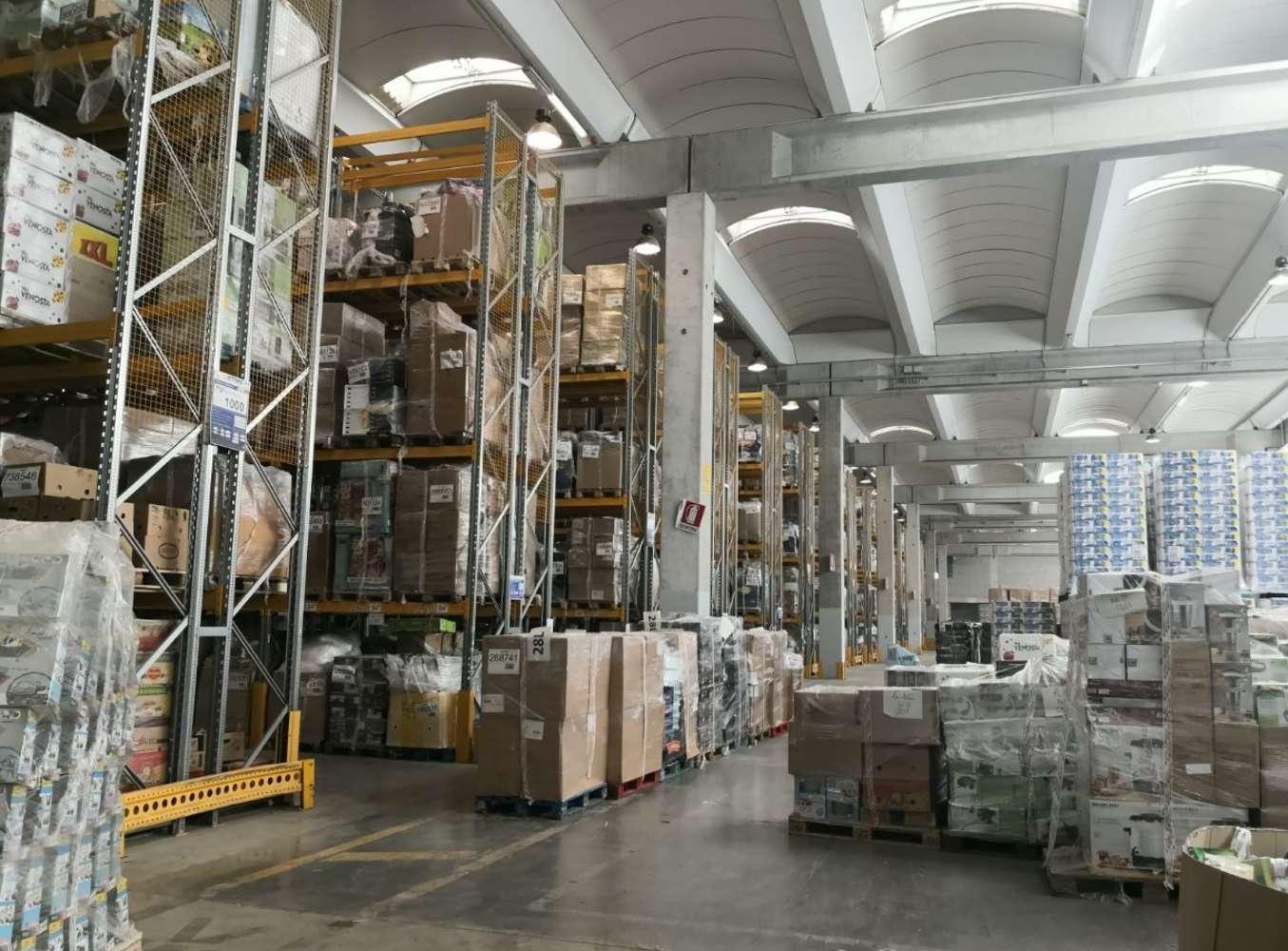 Magazzini industriali e logistici Pisa, 56126 - Pisa - Magazzino Logistica
