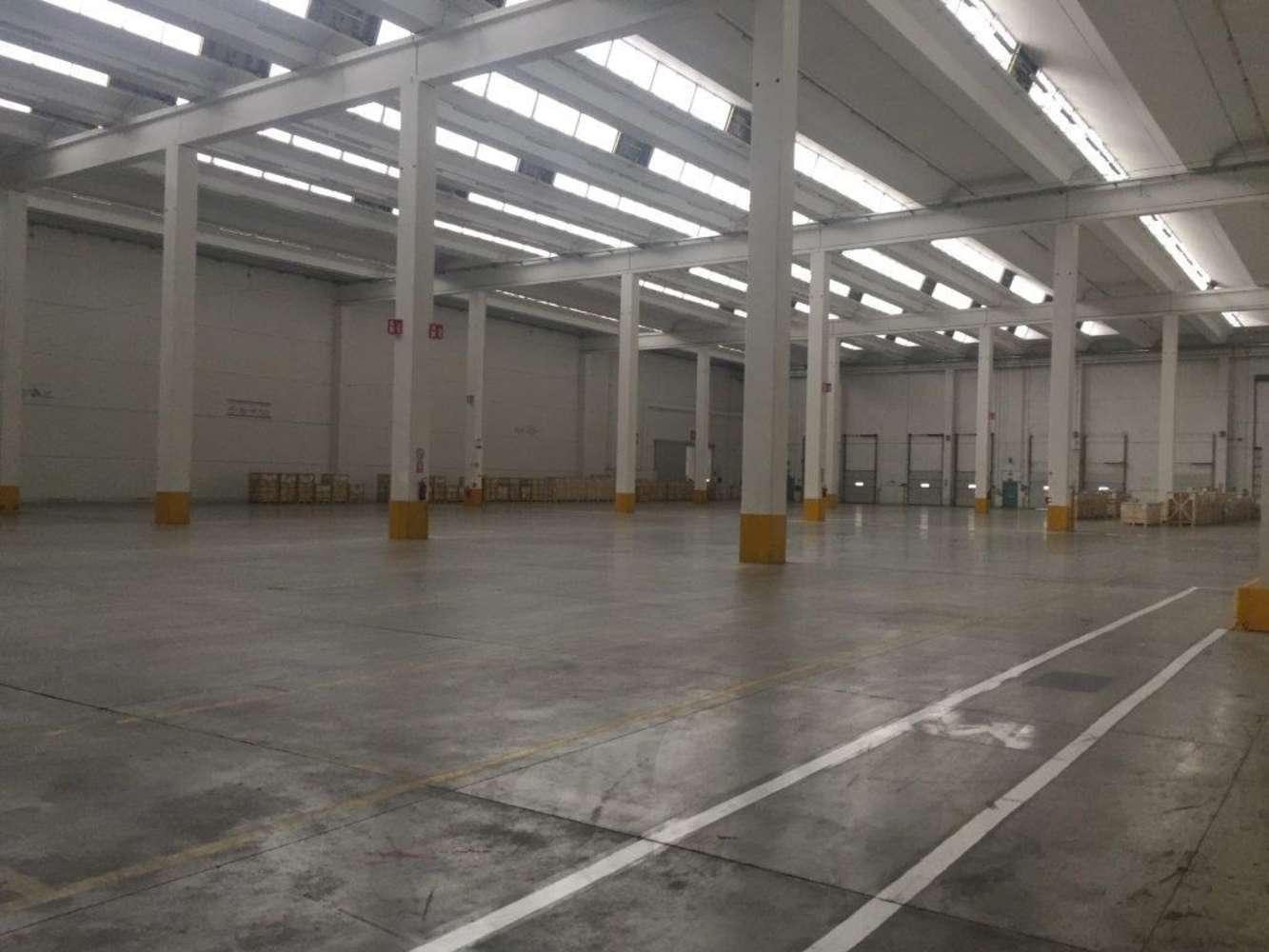 Magazzini industriali e logistici Alessandria, 15057 - Rivalta Scrivia - 9134648