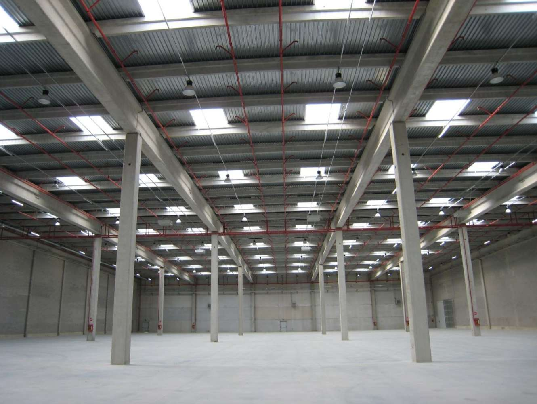 Magazzini industriali e logistici Biandrate (no), 28061 - Biandrate Logistics Park - 9210229