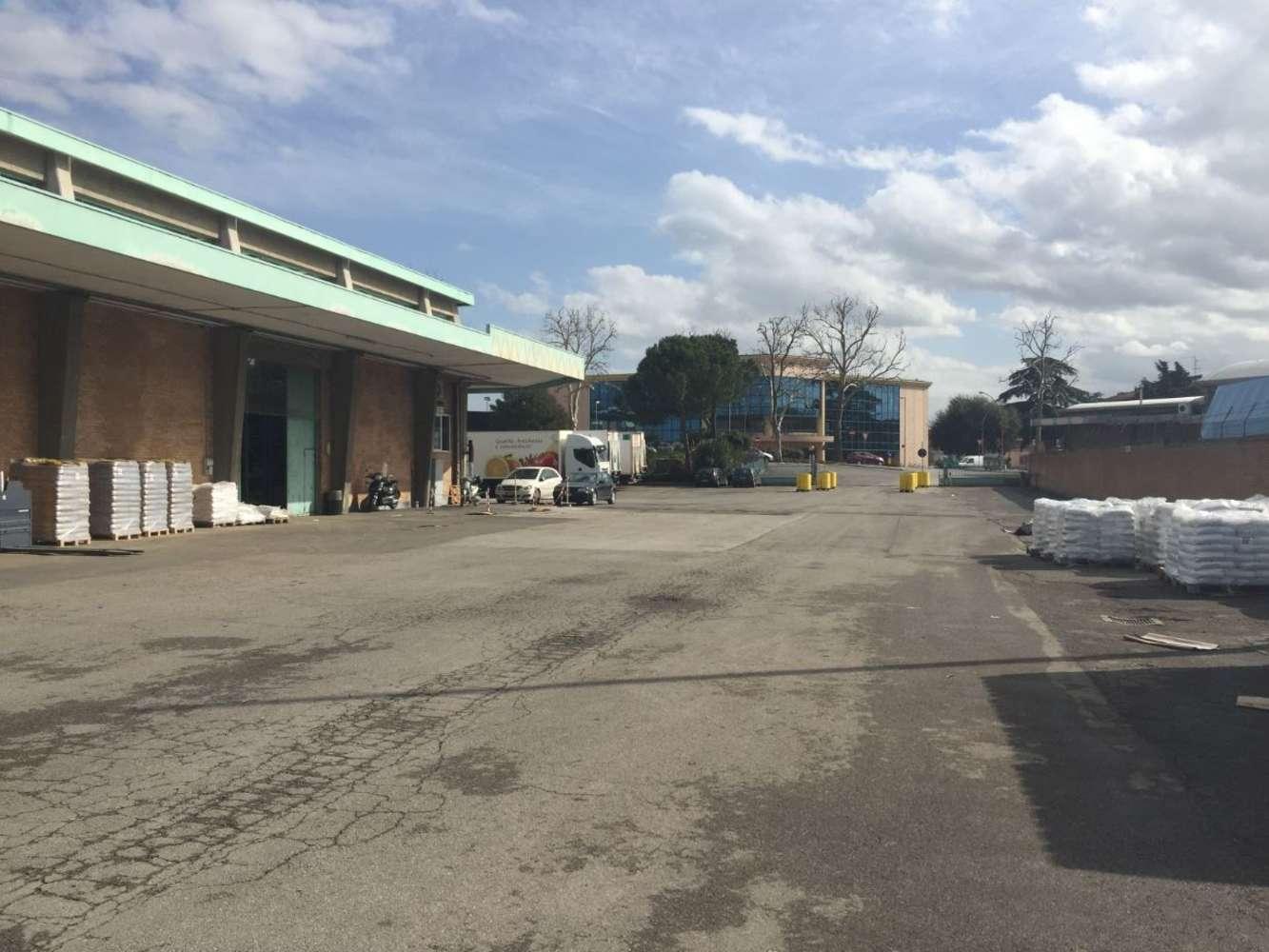 Magazzini industriali e logistici Cesena, 47521 - Cesena Warehouse - 9212972