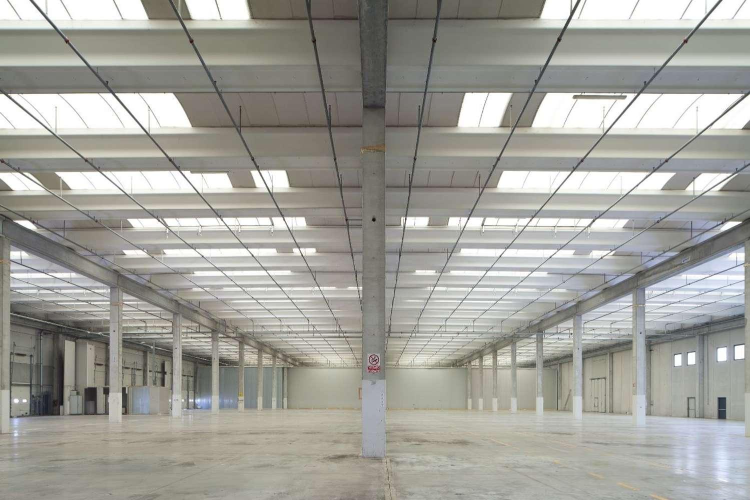 Magazzini industriali e logistici Carpiano, 20080 - Carpiano - Via Pertini - 9212986