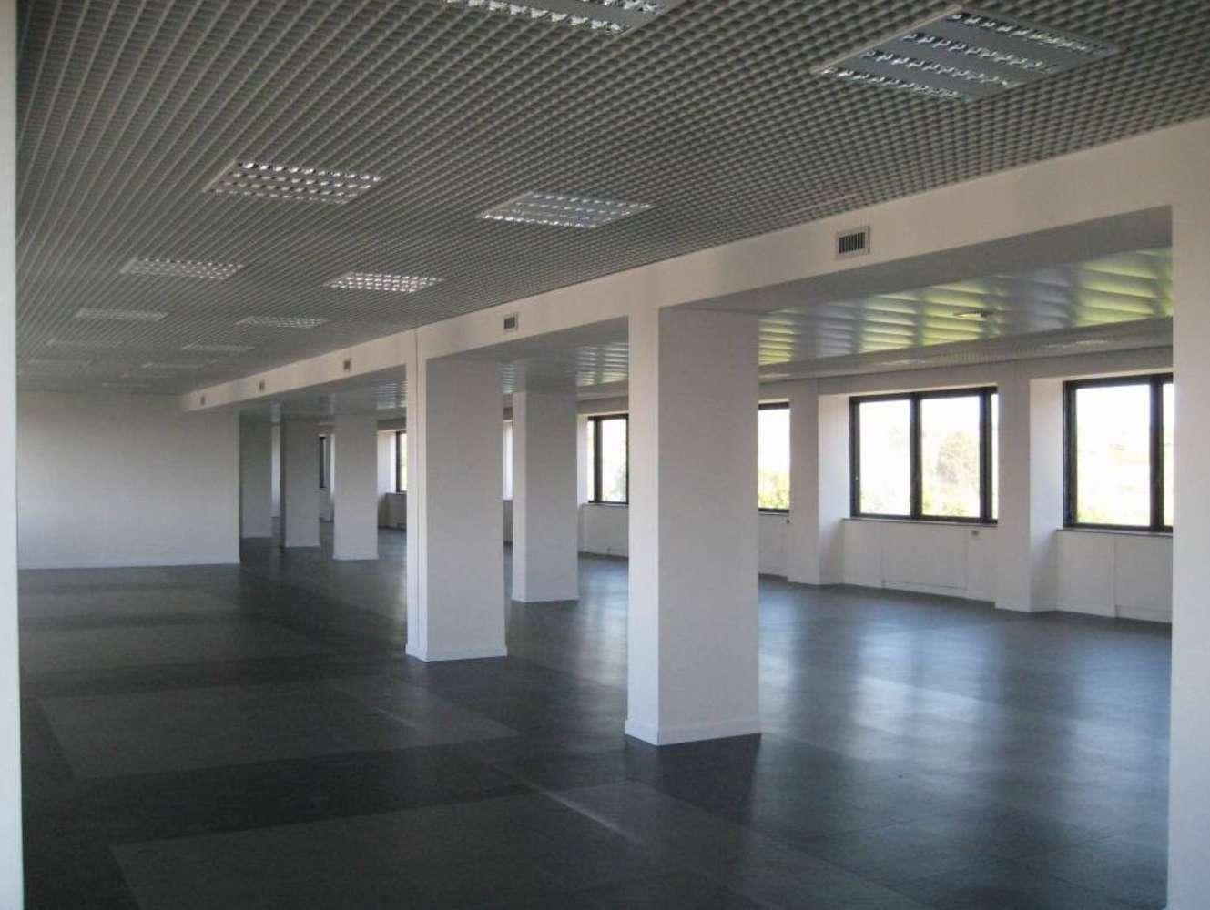 Ufficio Roma, 00148 - Veneziani 56 - 9493205