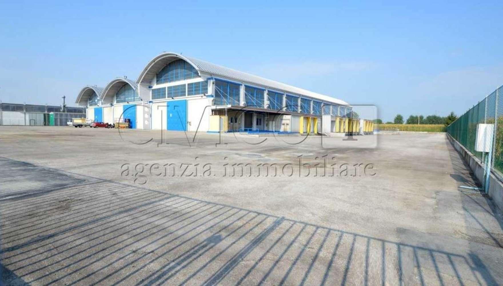 Magazzini industriali e logistici Mestrino, 35035 - Mestrino - 9501244