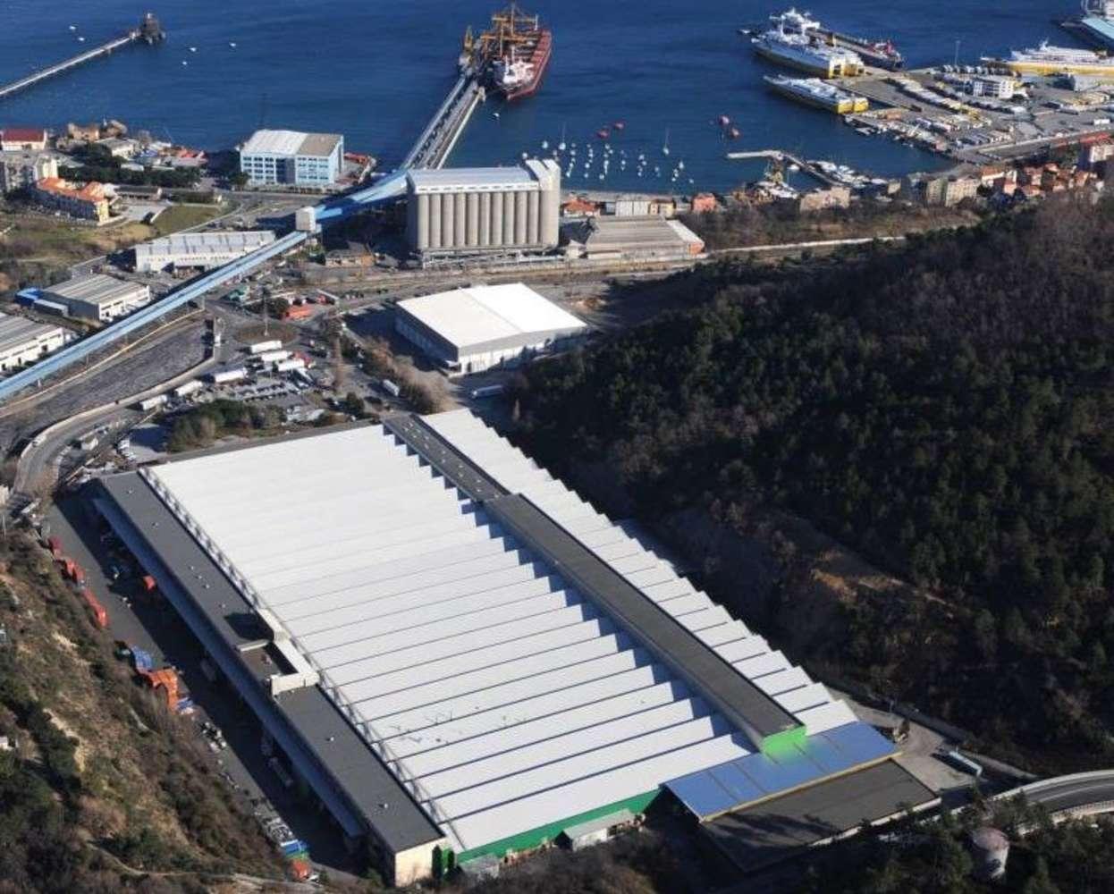 Magazzini industriali e logistici Vado ligure, 17047 - Interporto Vado Ligure - 9664603