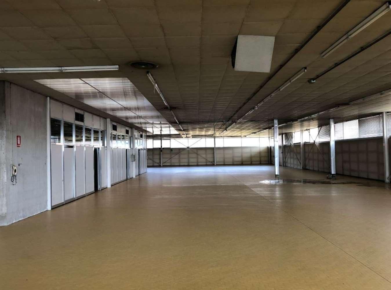 Magazzini industriali e logistici Magnano in riviera, 33010 - Magnano in Riviera – Udine - 10080696