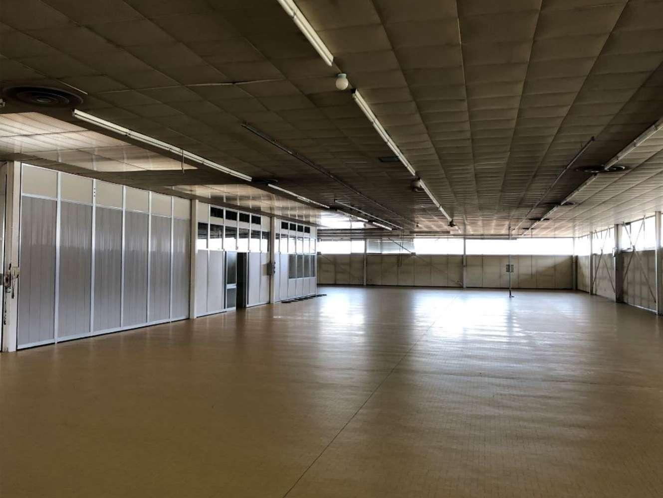 Magazzini industriali e logistici Magnano in riviera, 33010 - Magnano in Riviera – Udine - 10080697