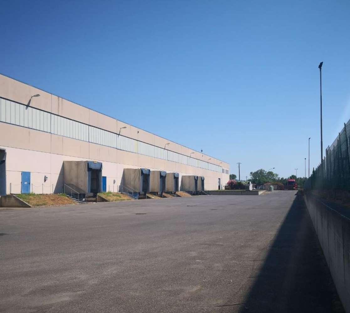 Magazzini industriali e logistici Pisa, 56126 - Pisa - Magazzino Logistica - 10516153