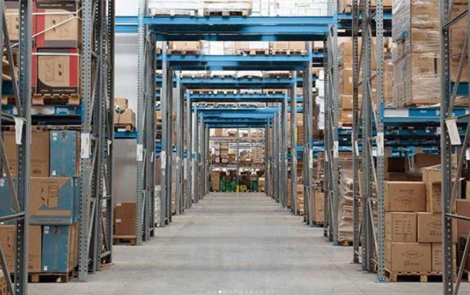 Magazzini industriali e logistici Pisa, 56126 - Pisa - Magazzino Logistica - 10516154