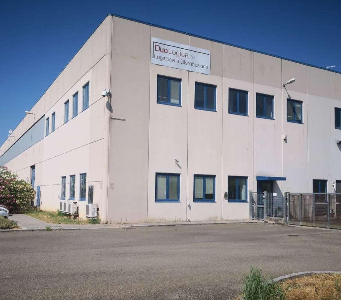 Magazzini industriali e logistici Pisa, 56126 - Pisa - Magazzino Logistica - 10516155