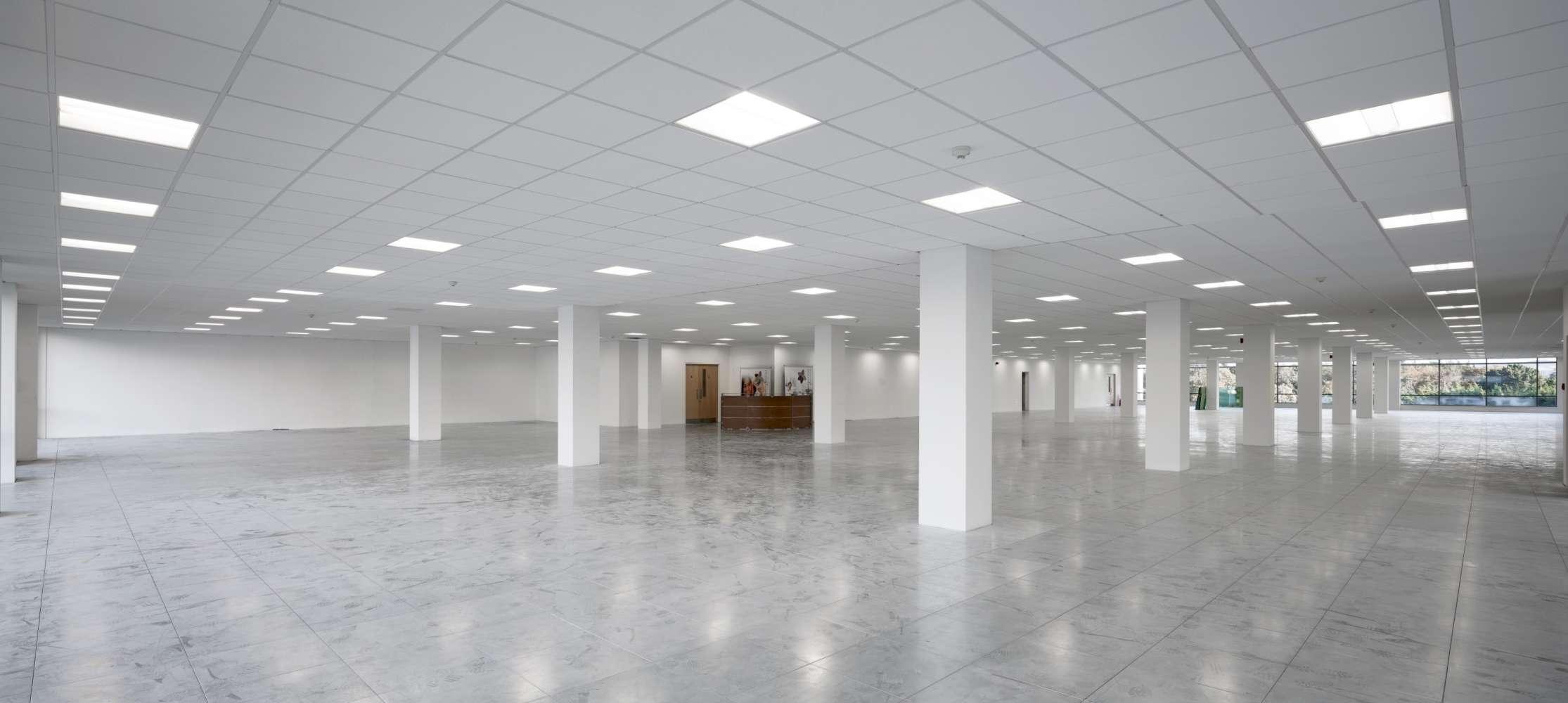 Office Co dublin, D18 K7W4 - Building 10, The Campus, Cherrywood