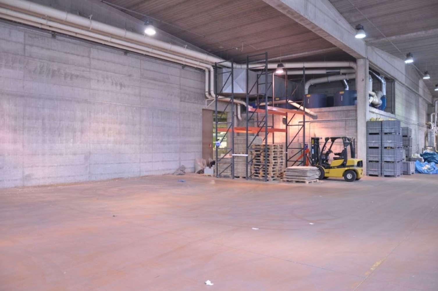 Magazzini industriali e logistici Inveruno, 20010 - Inveruno Via Rembrandt - 10810234