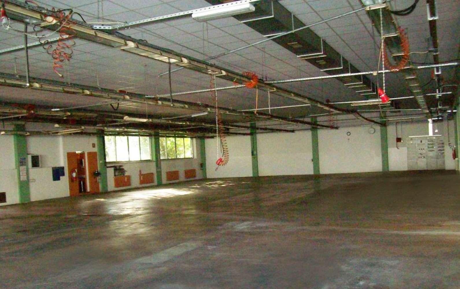 Magazzini industriali e logistici Treviglio, 24047 - Stabile industriale Treviglio - 10878335