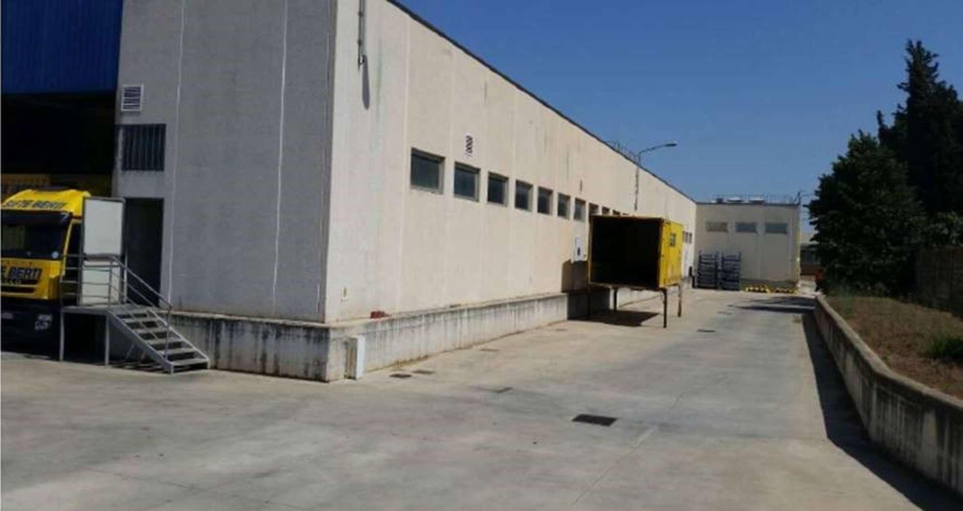 Magazzini industriali e logistici Pomezia, 00040 - Immobile Logistico Pomezia - 10913499
