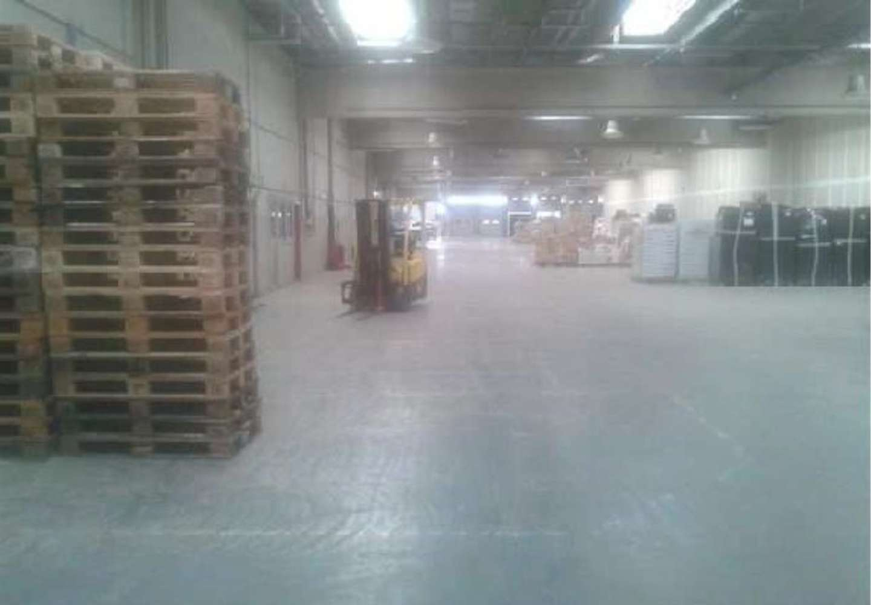Magazzini industriali e logistici Pomezia, 00040 - Immobile Logistico Pomezia - 10913501