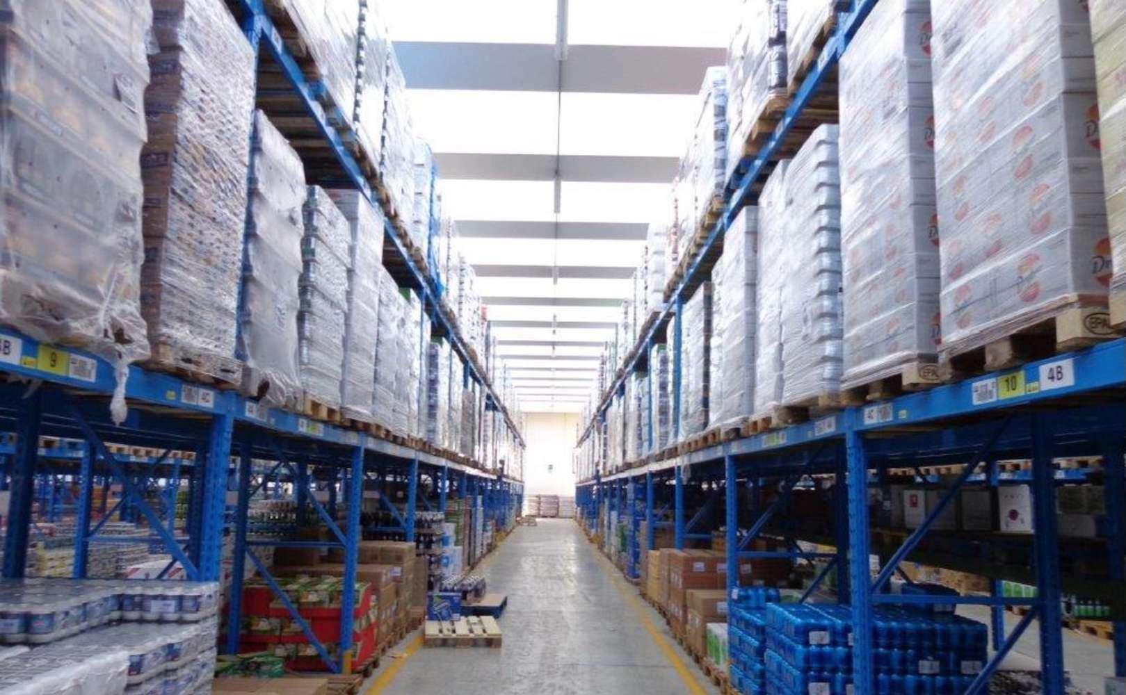 Magazzini industriali e logistici Mozzecane, 37060 - Mozzecane magazzini logistici - 10926881