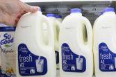 Milk New Zealand