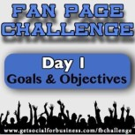 Fan Page Challenge