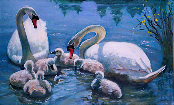 The Swan Family, 20 x 30. Prints Available Now.