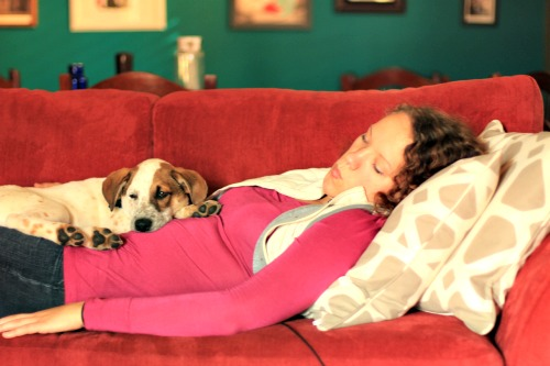 Stanley and me napping.