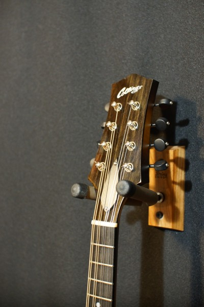 Collings MT (upgraded!) (6)