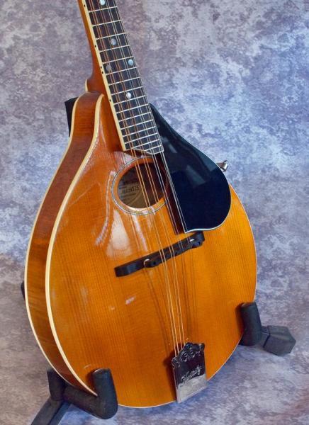 Kentucky KM 272 (Amber) (1)