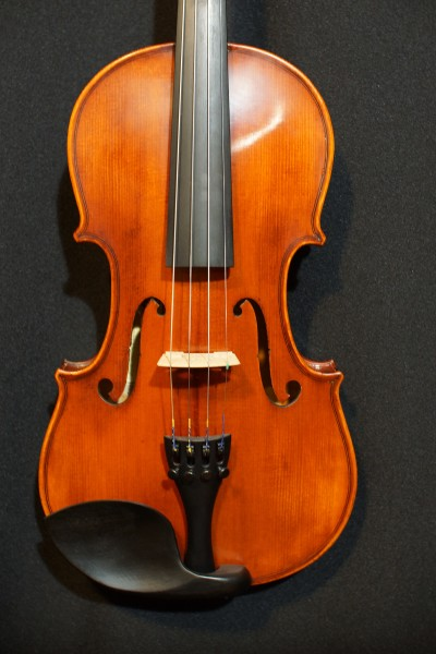 Eastman VL105 Fiddle Outfit (1)