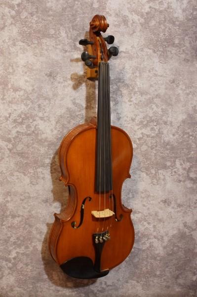 Gliga Viola (4)