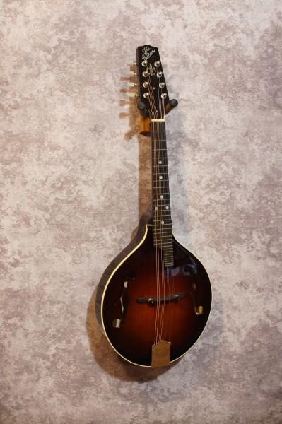 1996 Gibson A5G (2)