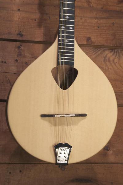Gold Tone Mandola (1)