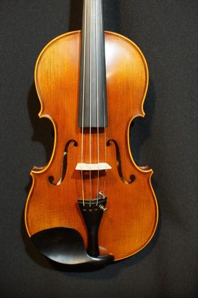 Novisio Violin (1)