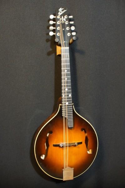 1990 Gibson A5G (6)