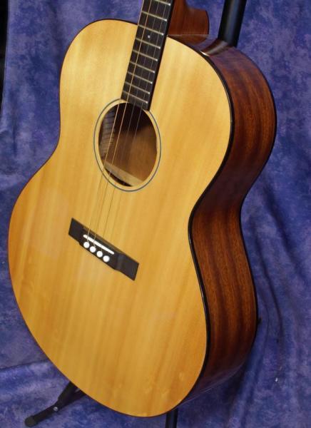Gold Tone  TG-18 Tenor Guitar (1)