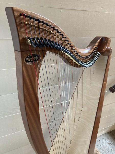 Dusty Strings Crescendo 34 (2)