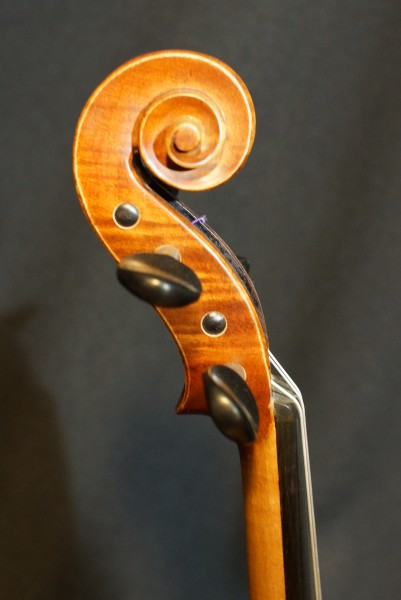Novisio Violin (2)