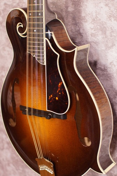 Collings MF5 Fern (3)