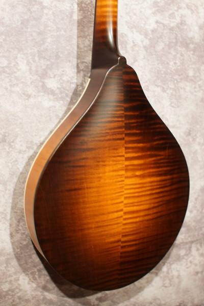 Collings MTO Gloss Top - Ivoroid Binding (4)