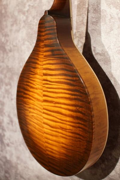 2003 Pomeroy Oval A Style (8)
