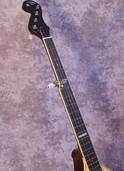 Gold Tone Banjola (2)