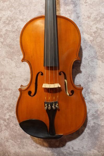 Gliga Viola (1)